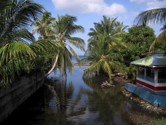 Dominica Island J79GF
