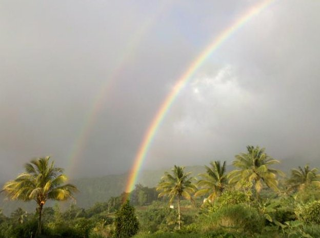 Dominica Island J79XB