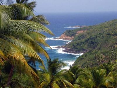 Dominica Island J79XBI 2011