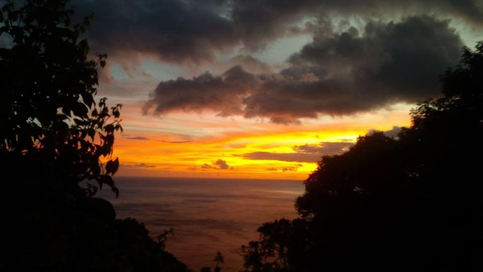 Dominica J79WTA