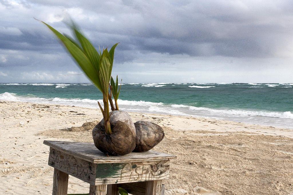 Dominican Republic HI/HB9JNJ DX News