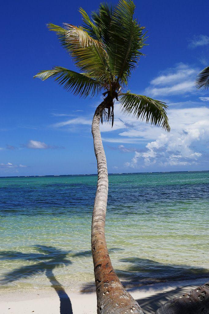 Доминиканская Республика HI4/CT1GIF DX Новости