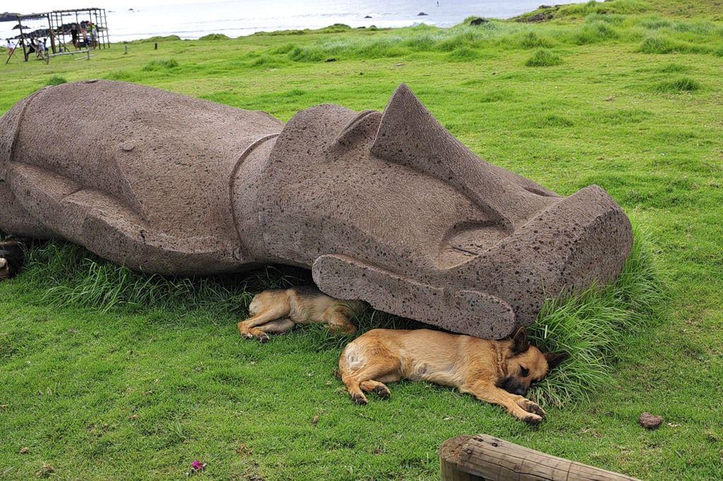 Easter Island Rapanui CE0Y/UA4WHX