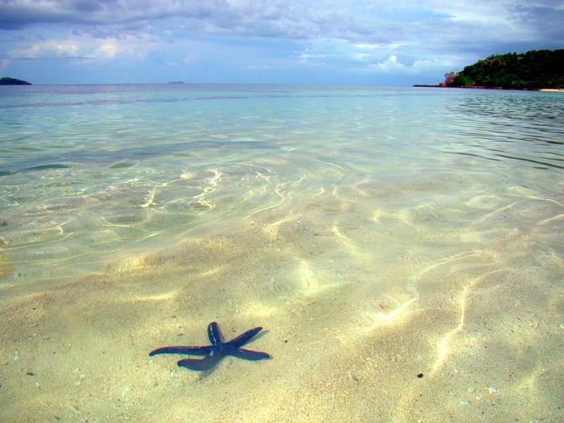 Fiji Islands 3D2EG