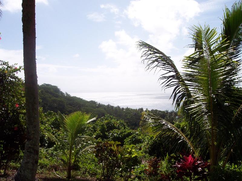 Fiji Islands 3D2UK