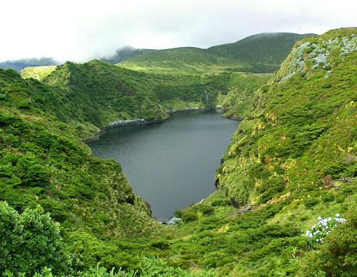 Flores Island CR2V