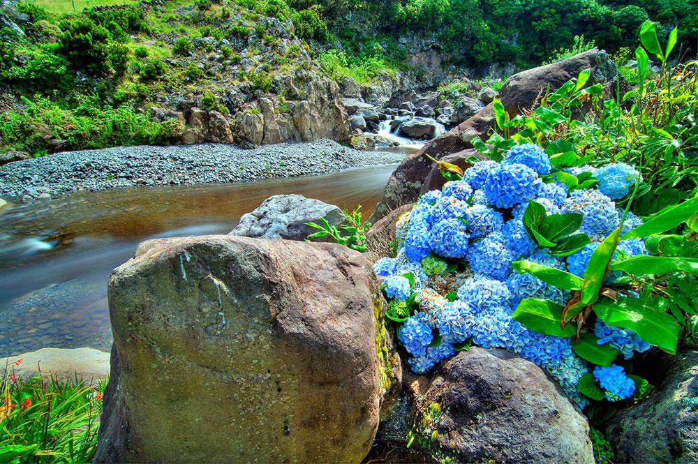 Flores Island CR2V DX News