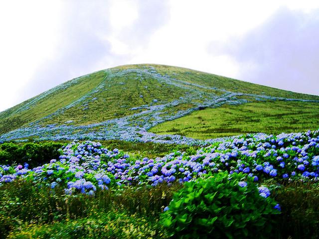Flores Island CR2W
