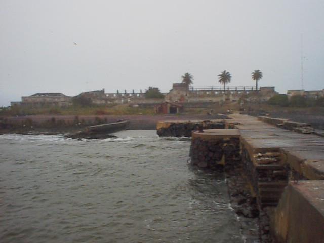 Flores Island CV5A
