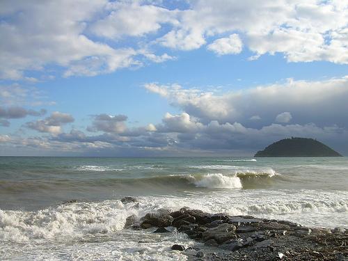 Gallinara Island