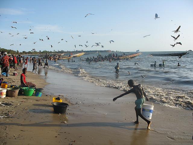 Gambia C56AVT Fish Market C5AVT