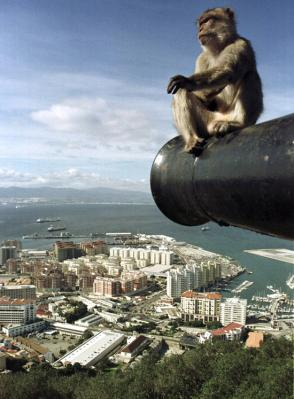 Gibraltar ZB2X CQ WW DX CW Contest 2009 DX News