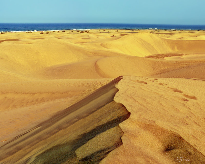 Gran Canaria Island EF8U