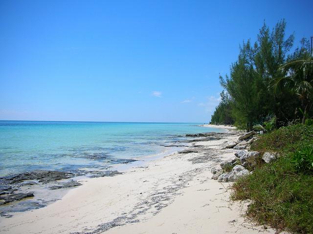 Grand Bahama Island Bahamas C6AEA DX News