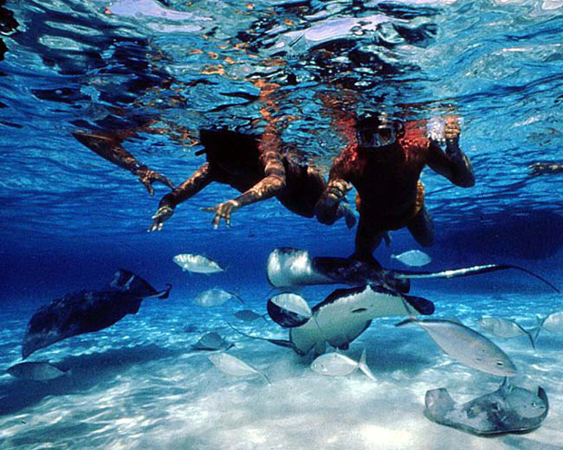 Grand Cayman Island Cayman Islands ZF2TK