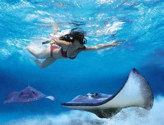 Grand Cayman Island DX News Cayman Islands ZF2AH