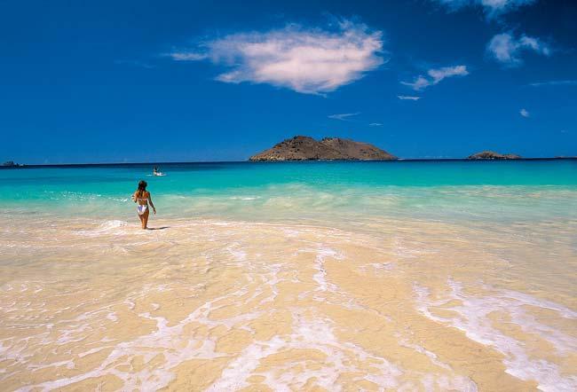 Guadeloupe Island FG/TU5KG