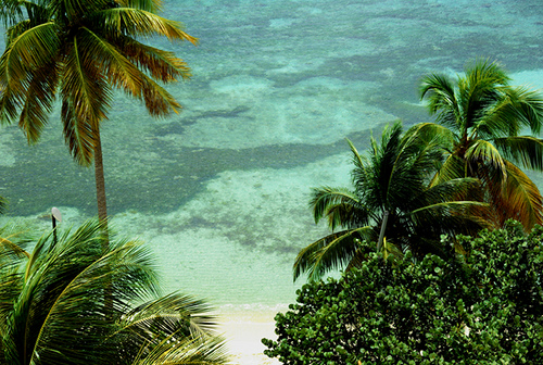 Guadeloupe Island FG4NN