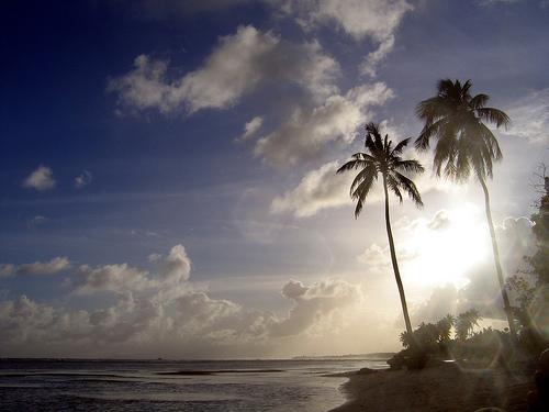 Остров Гваделупа TO11A