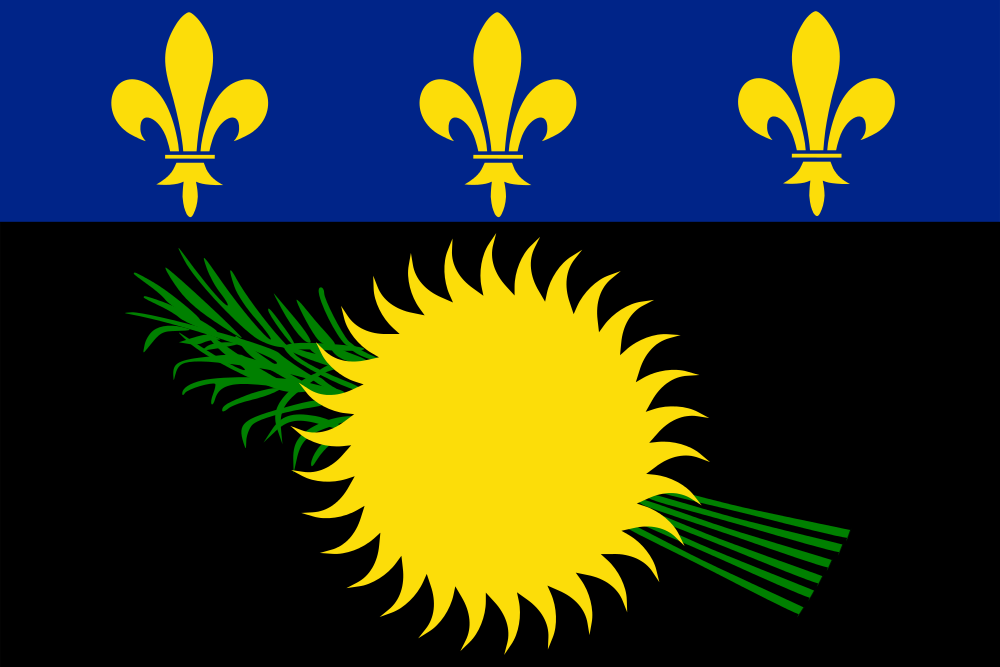 Guadeloupe Flag of Guadeloupe TO6A