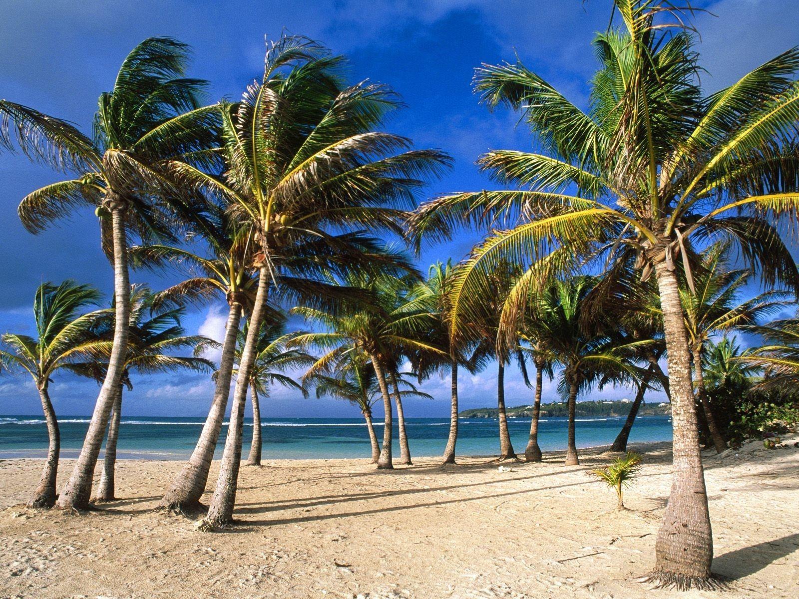 Остров Гваделупа TO22C