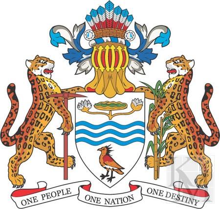 Гайана 8R1A 2013