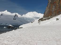 Остров Полумесяца Южно Шетландские Острова Антарктида
