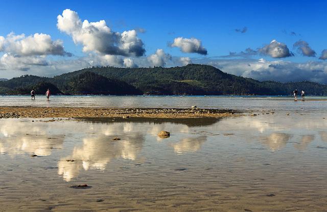 Остров Гамильтон Австралия JA1NLX/VK4 DX Новости Туристические Достопримечательности
