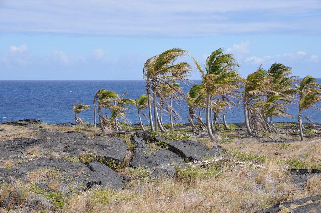 Гавайские острова  KH6/N6GQ