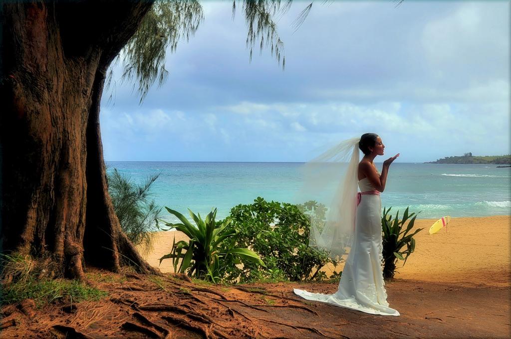 Гавайские острова W8XGI/KH6 DX Новости