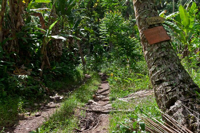Hiva Oa Island Marquesas Islands FO/UT6UD DX News