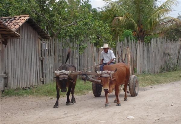 Honduras HR9/WQ7R