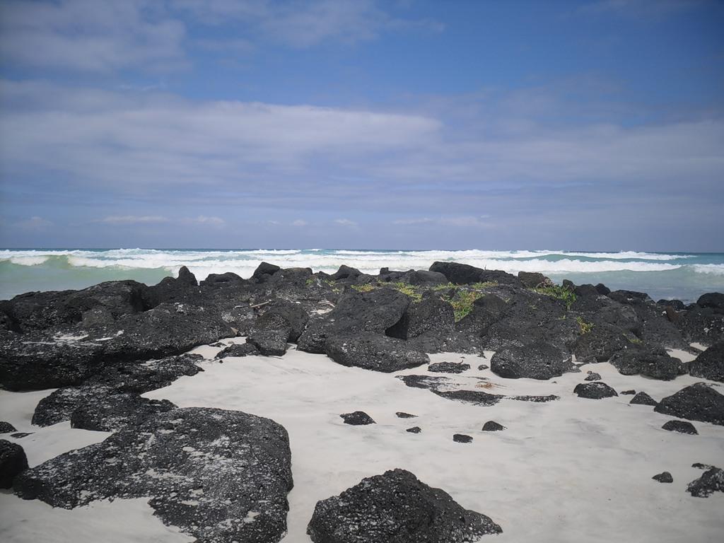 Остров Изабелла Галапагосские острова HC8/G8OFQ DX Новости