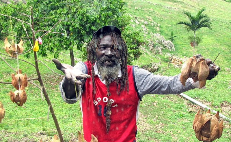 Ямайка 6Y5/KJ4YDW