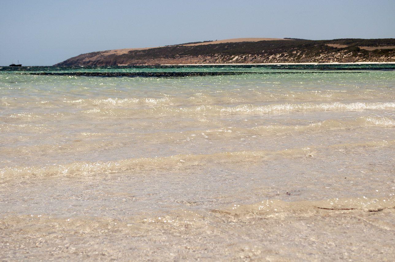 Остров Кенгуру фотогалерея 5