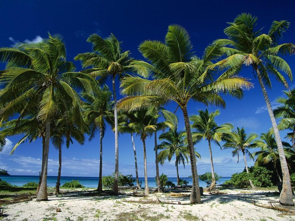Kingdom of Tonga A31JY A31MA A31VA A31KJ DX News