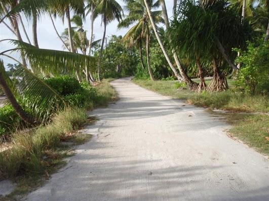Kiribati T32TM DX News