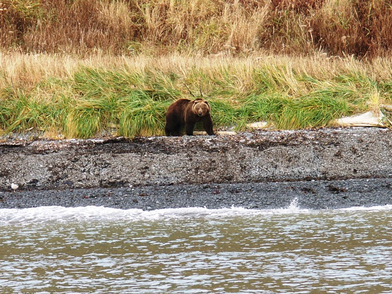 Kodiak Island KL7RRC/P Alaska