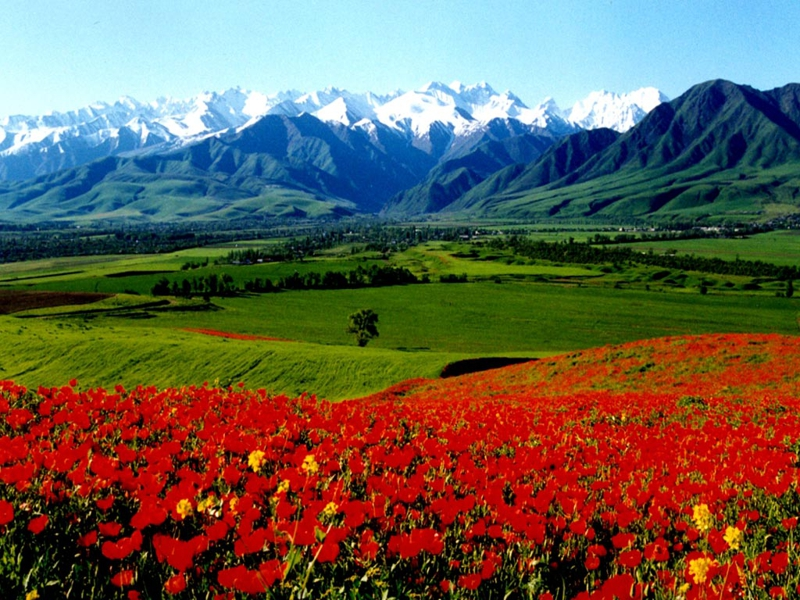 Kyrgyzstan EX/UA4WHX Tourist Attractions DX News