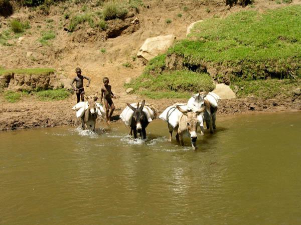 Lesotho 7P8JA
