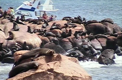 Lobos Island DX News XF2P