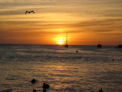 Остров Лос Рокес DX Новости YW5LR