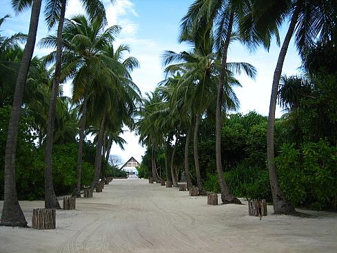 Остров Маафуши Мальдивские острова 8Q7AU DX Новости