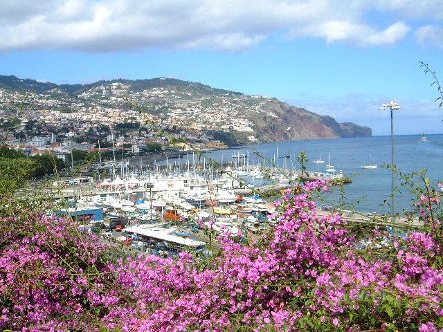Madeira Island CT3/CS1GDX