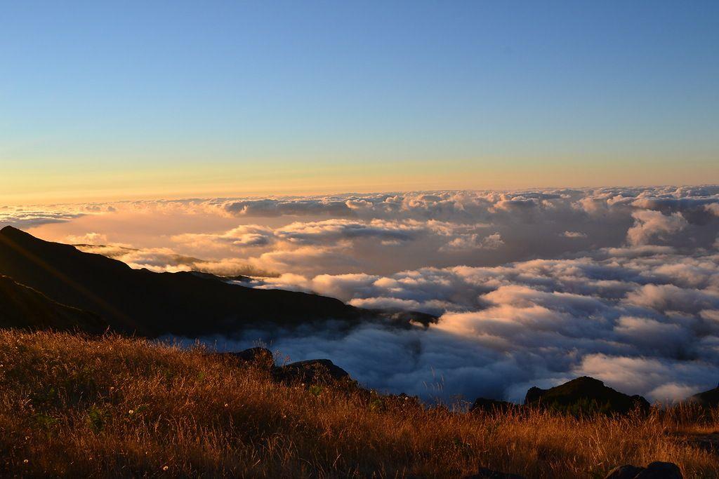 Madeira Island CT9/R9DX