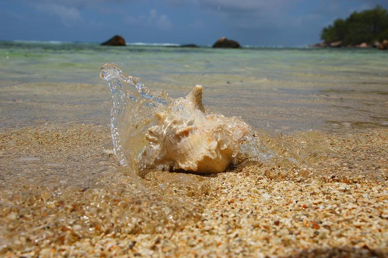 Остров Маэ Сейшельские острова S79RR DX Новости
