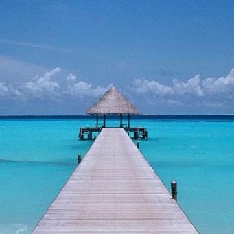 Maldive Islands DX News 8Q7DV