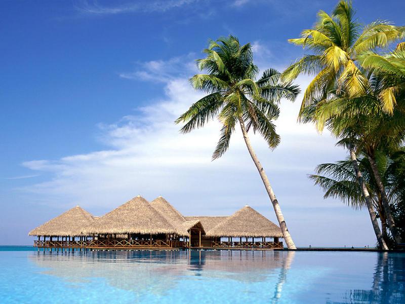 Мальдивские Острова DX Новости 8Q7VR