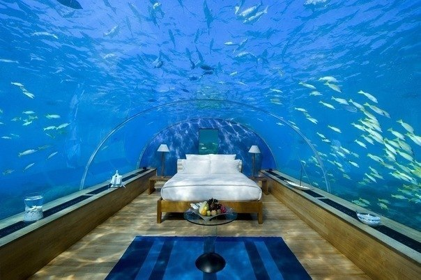 Maldive Islands Underwater Room Underwater Hotel 8Q7OE