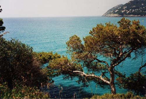 Mallorca Island EA6/SP5OXJ